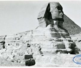 Postcard Egitto