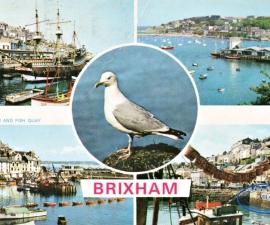 Brixham (Devon)