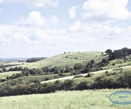 Luton (Bedfordshire)