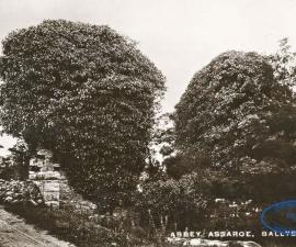 Ballyshannon (Donegal)