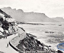 Cape Peninsula (Cape Town)