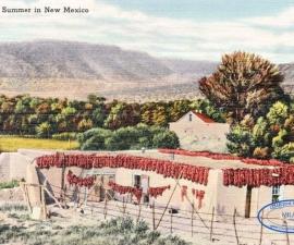 Postcard Usa