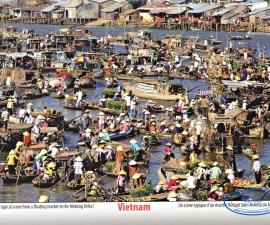 Mecong Delta